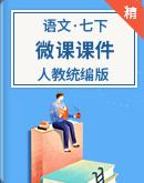 人教统编版语文七年级下册 微课课件