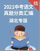 【湖北专版】2021年中考语文真题分类汇编 试卷
