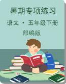 """部编版语文五年级下册暑期""""字、词、句""""专项练习题(含答案)"""