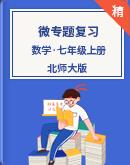 北師大版數學七年級上冊 微專題復習(原卷版+解析版)