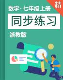 浙教版數學七年級上冊 同步練習(含解析)