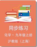 滬教版(上海)化學九年級第一學期同步練習(含答案)