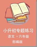 部编版语文小升初专题练习(Word版,含答案)
