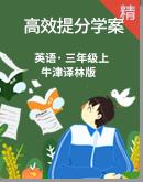 牛津译林版三年级上册英语高效提分方案(基础巩固+考点密押+专项突破+易错练习)