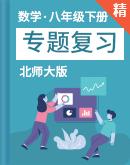 北师大版数学八年级下册 专题复习(含解析)