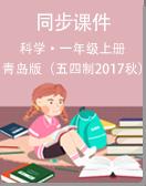 青島版(五四制2017秋)科學一年級上冊同步課件