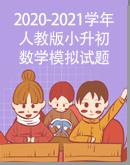 2020-2021學年人教版小升初數學模擬試題(含解析)