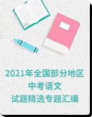 2021年全国部分地区中考语文试题精选专题汇编(含解析)