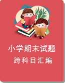 广东省湛江市坡头区2020-2021学年第二学期1-6年级各科期末试题