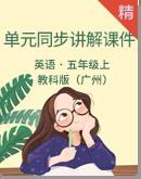 教科版(广州)五年级上册英语单元同步讲解课件