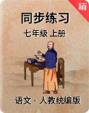 人教统编版澳门葡京玩法七年级上册 同步练习
