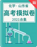 2021山东省高考化学模拟卷(含解析)