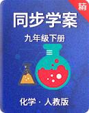 2021-2022人教版化学 九年级下册  同步学案(含答案)