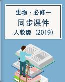 高一上學期生物人教版(2019)必修一同步課件