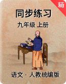 人教统编版语文九年级上册 同步练习