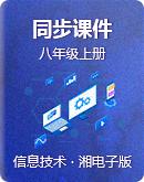 湘电子版(2019)信息技术八年级上册 同步课件