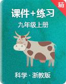浙教版科学九年级上册同步课件+练习+视频素材