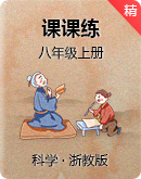 浙教版科学八年级上册课课练