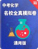 2022年中考化学 名校全真模拟卷(含答案及解析)