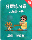 浙教版科学九年级上册同步分层练习卷