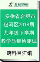 安徽省合肥市包河区2018届九年级下学期教学质量检测试题