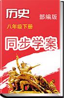 2017—2018学年初中历史(部编版)八年级下册同步学案(三)