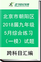 北京市朝阳区2018届九年级5月综合练习(一模)试题
