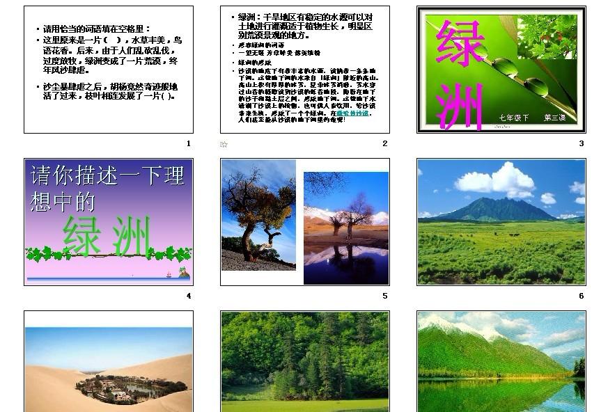 [初中美术课件]七年级第三课绿洲图片