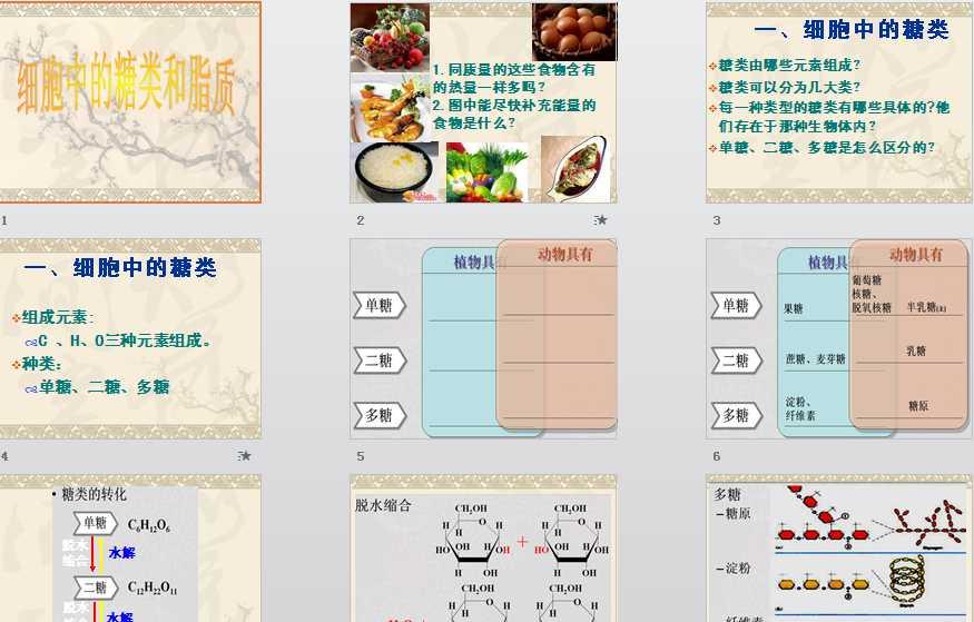 第4节人教中的生物和脂质高中|细胞课件,糖类体检表高中生图片
