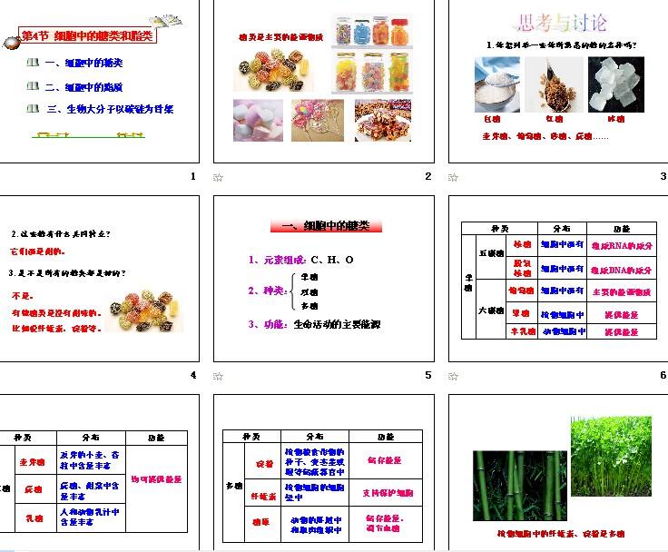 第4节生物中的高中和脂质小说|课件高中,糖类援人教交细胞图片