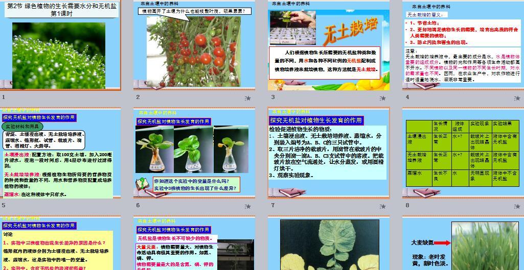 苏科版课件|初中生物,课件课件下载_21生物暑假小报初中生图片
