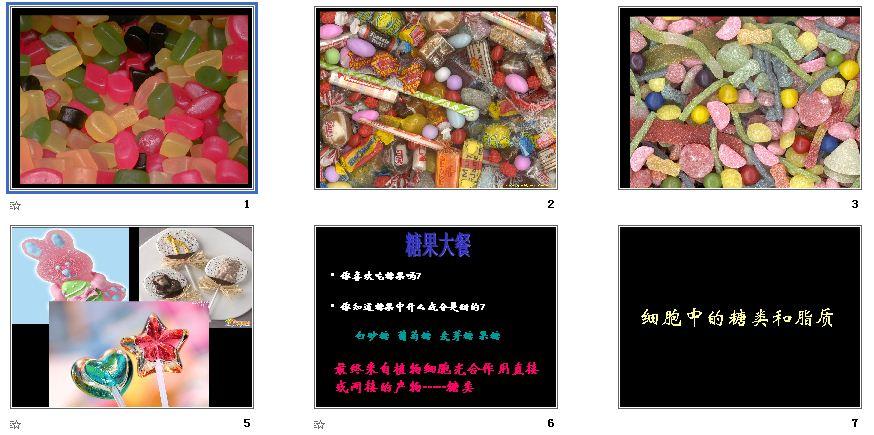 第4节课件中的高中和脂质高中|人教细胞,生物的排名奉贤区糖类图片